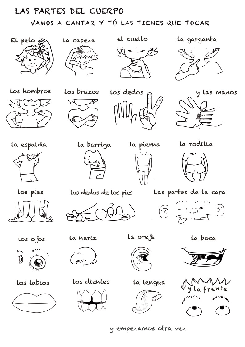 worksheet Spanish Worksheets Body Parts spanish language song about parts of the body rockalingua body
